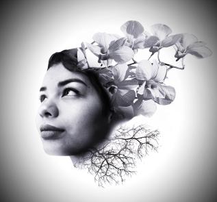 P4-SYH-SaulGonzalez-Grow